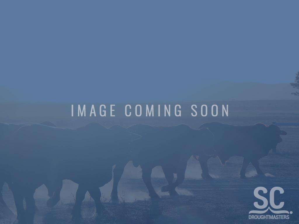 image_coming_soon_@1x